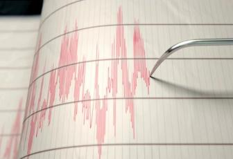 Image result for 7.3-magnitude quake hits Indonesia, no tsunami threat