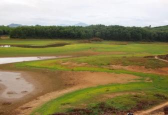 Drought puts central Vietnam irrigation lakes out to pasture