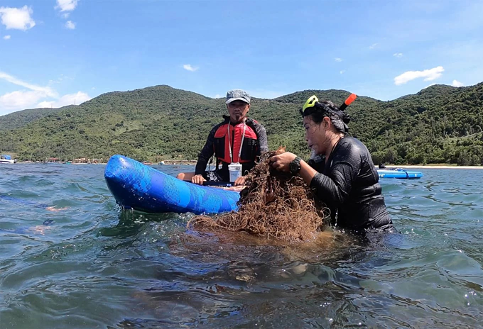 Cleanup operation on Da Nangs peninsula helps protect coral reefs - 5