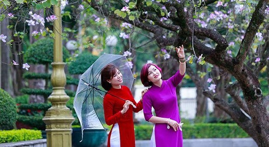 First-ever Ban Flowers Festival to be held in Hanoi