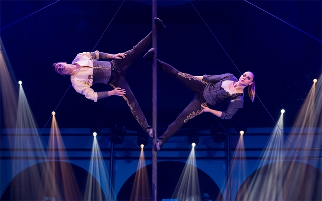 World circus festival comes to Hạ Long