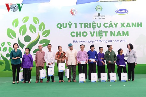 100,000 green trees planted in bac kan hinh 3
