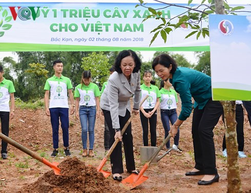 100,000 green trees planted in bac kan hinh 1